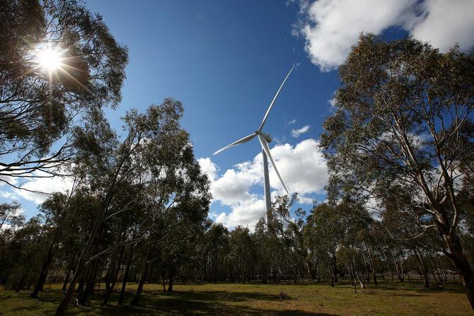 Các dự án điện gió trên thế giới có nhiều tỷ lệ không gian khác nhau.
