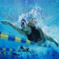 Bơi lội giúp não bộ khỏe mạnh và giảm căng thẳng, mệt mỏi