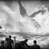 Sóng âm hé lộ xác tàu ngầm nghi bị thủy quái đánh chìm
