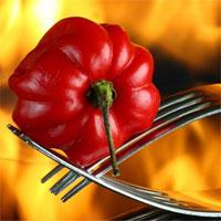 Top các loại ớt cay nhất trên thế giới