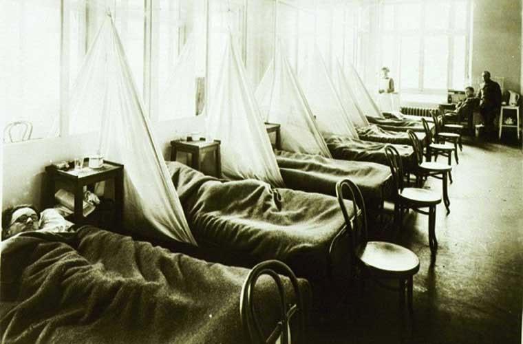 20-40 triệu người ở châu Á, châu Âu và Bắc Mỹ đã chết trong trận đại dịch cúm bắt đầu hồi tháng 3/1918.