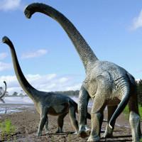 Phát hiện khủng long ăn cỏ mới ở Úc dài 15 mét, nặng gần 20 tấn