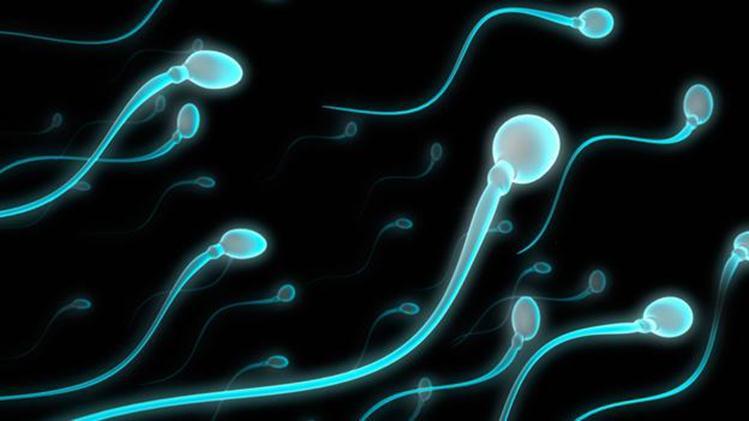 Phát hiện này sẽ là một biện pháp tránh thai cho nam giới hiệu quả.