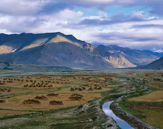 Tây Tạng.