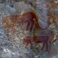 Bức tranh hang động khẳng định trên Trái đất từng tồn tại loài bò rừng lai