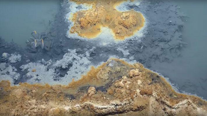 Vùng hồ nằm dưới vịnh Mexico mang nhiều độc tố có thể gây chết người và động vật.