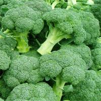 """Tìm ra phương thuốc """"trẻ mãi không già"""" từ dưa chuột, bông cải xanh và quả bơ"""