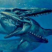 Hóa thạch quái vật biển 75 triệu năm nguyên dấu răng kẻ thù