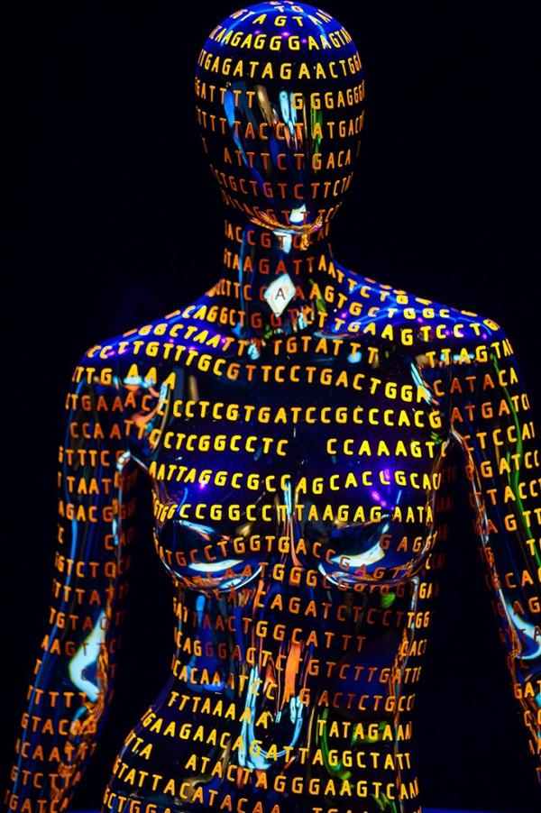 Thật kinh ngạc khi biết rằng con người chỉ cần 3000 gen để có một cơ thể khỏe mạnh.