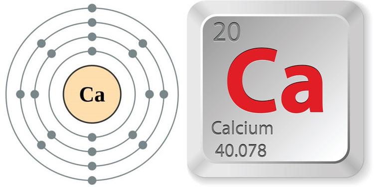 Canxi lại là nguyên tố kim loại có nhiều nhất trong cơ thể con người.