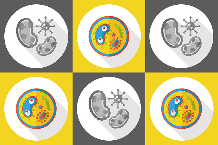 Peptide mới có thể tiêu diệt nhiều loại vi khuẩn, bao gồm vi khuẩn kháng thuốc kháng sinh.
