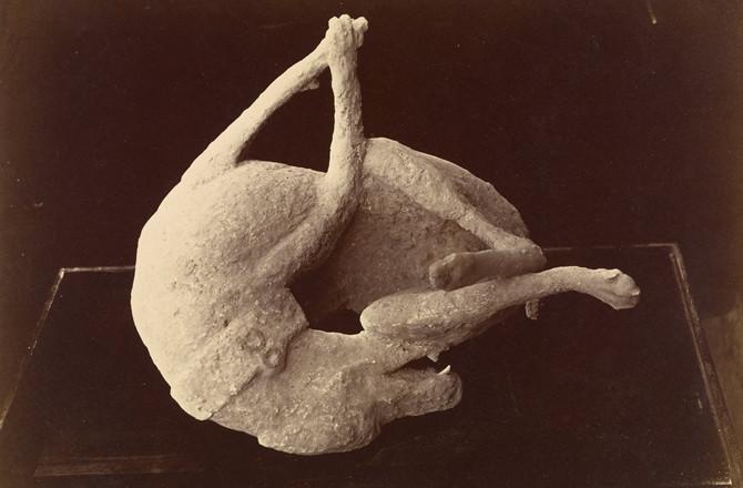Khối đá hình con vật cũng được tìm thấy, nó giống với hình ảnh một con chó.