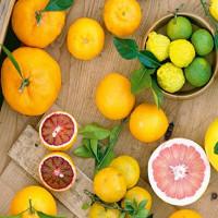 Tại sao chúng ta cần ăn những loại trái cây này mỗi ngày?