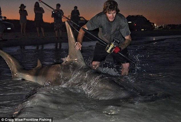 Sau khi đo chiều dài của con cá và chụp một vài kiểu ảnh, hai người đàn ông thả nó về biển.