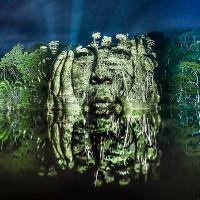 """Kinh ngạc bộ tranh """"vẽ"""" trên cây trong rừng Amazon"""
