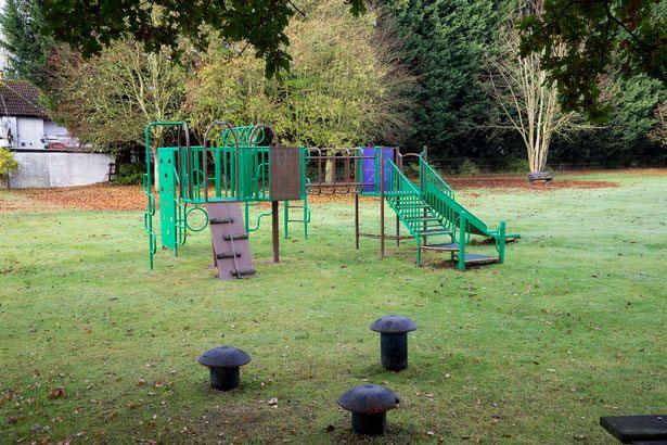 Sân chơi cạnh khu vực Philip ghi được hình ảnh con linh miêu.