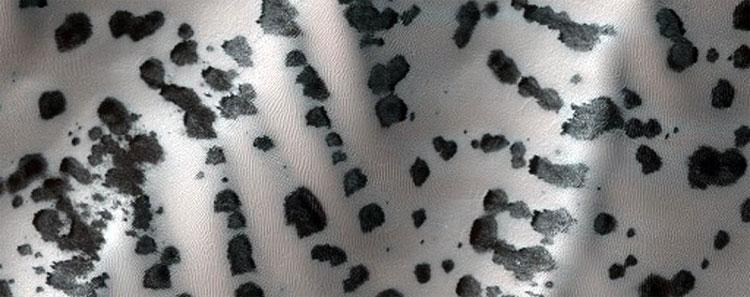 Một bãi cát với nhiều mỏm đá trông như tấm lưng ngựa vằnMột bãi cát với nhiều mỏm đá trông như tấm lưng ngựa vằn