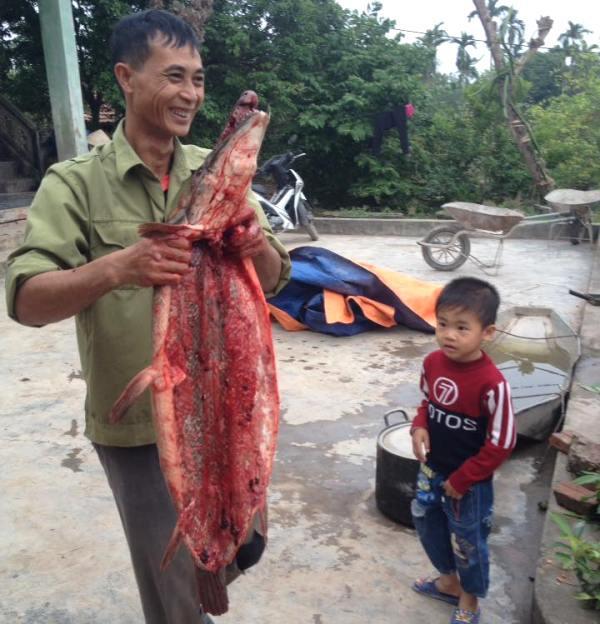 Gia đình ông Thái quyết định xẻ thịt con cá chứ không bán.