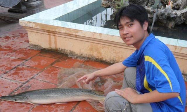 Trước đó, người dân thôn Tân Văn 3, xã Tân Dĩnh, huyện Lạng Giang (Bắc Giang) cũng bắt được con cá giống gia đình ông Thái vừa bắt được.
