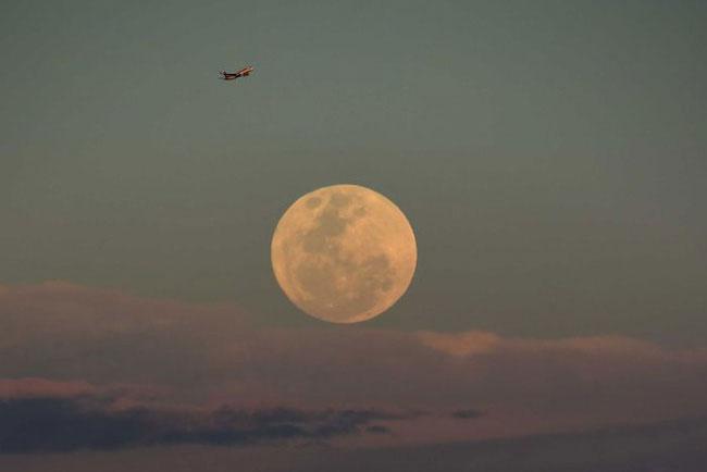 Siêu trăng hiện rõ trên bầu trời nước Úc ngày 14/11/2016.