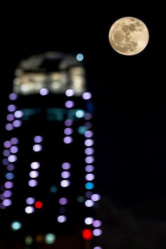 Ở Đà Nẵng, trời trong vắt khiến người dân được ngắm siêu trăng rõ nhất.