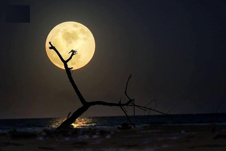 Siêu trăng chụp trên biển Quảng Bình.