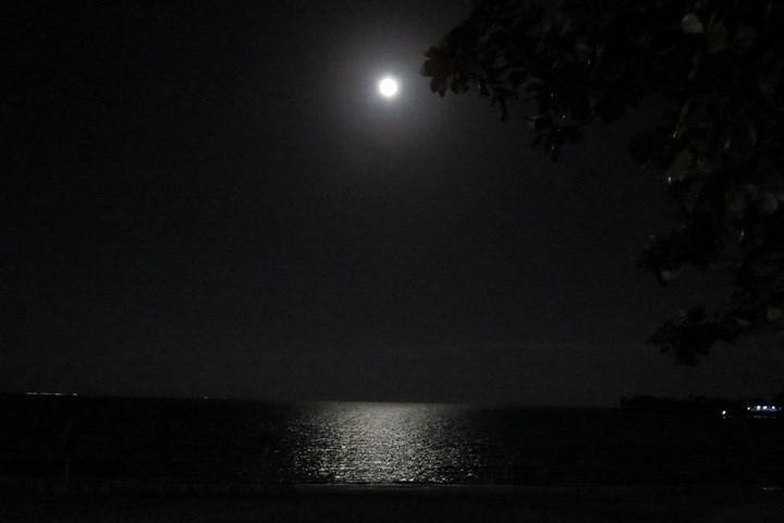 Siêu trăng sáng rực vùng biển Đồ Sơn, Hải Phòng.