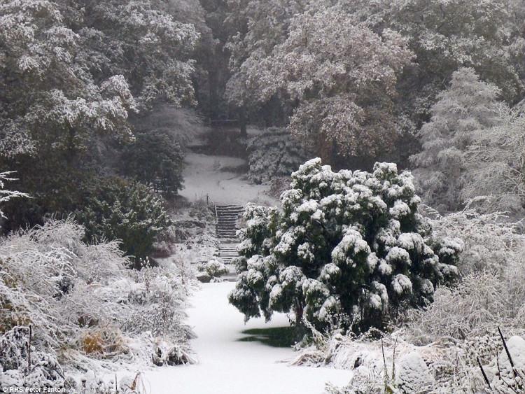 Các nhà chức trách cảnh báo, với lượng tuyết rơi dày vào đầu mùa như vậy, nguy cơ lở tuyết có thể xảy ra trong vài ngày tới.