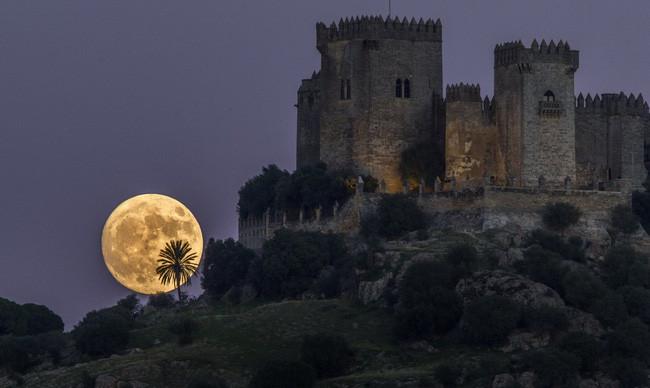 ....hay bên cạnh nhưng tòa lâu đài sừng sững.