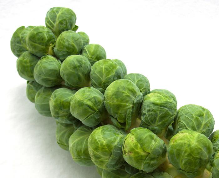 Vị đắng lạ miệng của cải brussel không chỉ mang hương vị đặc trưng mà còn có tác dụng làm ấm cơ thể khi trời trở rét.