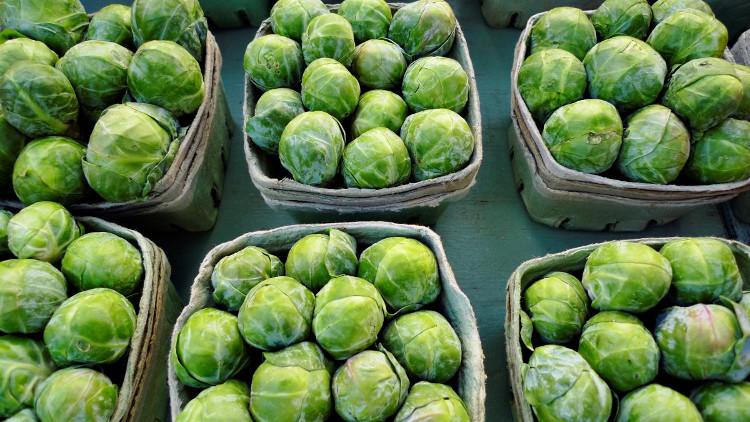 Ăn bắp cải tí hon sẽ giúp cơ thể chúng ta chống lại những giá lạnh của mùa đông rất hiệu quả.