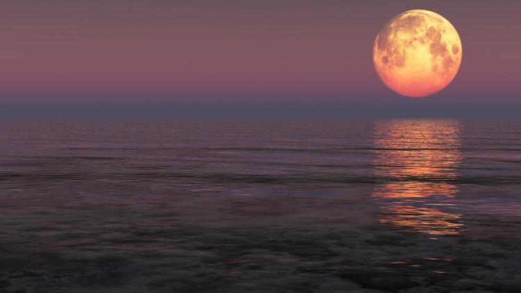 Siêu trăng trên biển Florida, Mỹ.