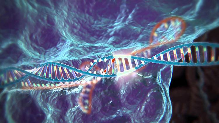 Công cụ chỉnh sửa gene gọi là CRISPR