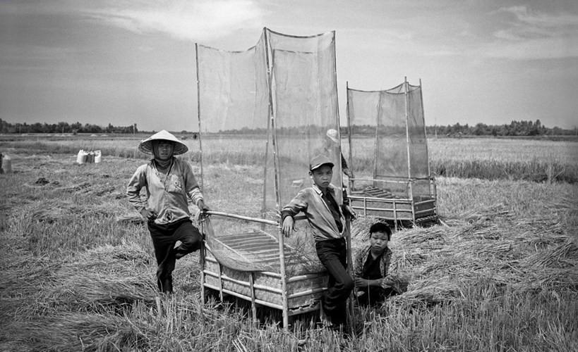 Một gia đình nông dân trên cánh đồng ở Củ Chi, 1994.