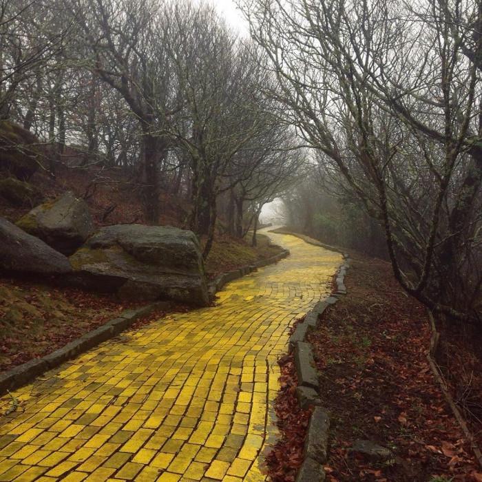 """Con đường gạch vàng trong công viên giải trí """"Xứ Oz"""", Bắc Carolina, Mỹ."""