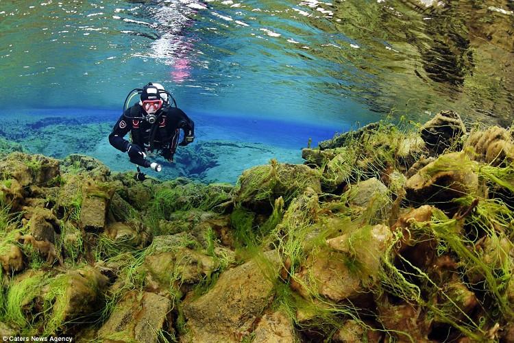 Cảnh vật dưới nước đều có thể nhìn rõ bằng mắt thường.