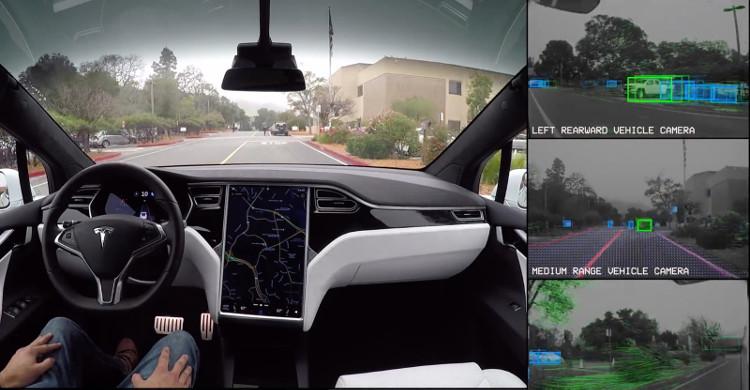 Bạn sẽ thấy camera và các cảm biến trên xe có thể nhận biết rất nhiều vật thể khác nhau.