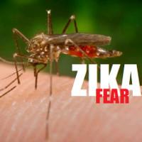 Những điều cần biết về nhiễm virus Zika ở trẻ em