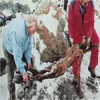 Người băng Otzi và những phát hiện mới có ích cho y học