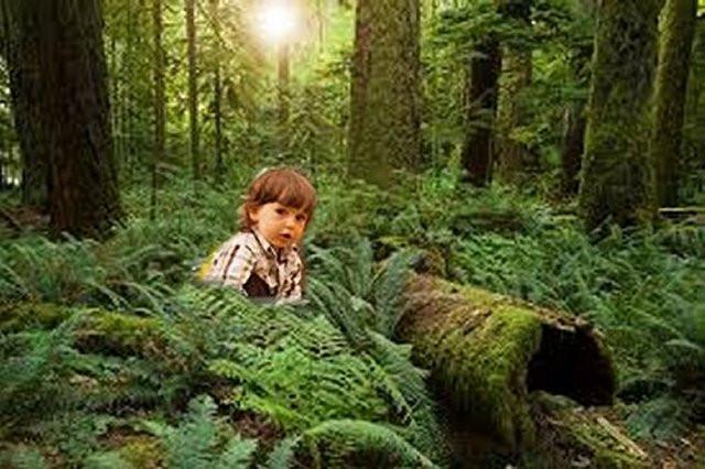 """Khi đi trong lùm cây, Brian chợt phát hiện một """"cái hố trên mặt đất"""" và muốn khám phá nơi này."""