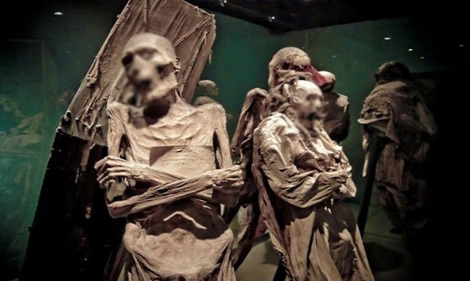 Bảo tàng thành phố Guanajuato, Mexico, lưu giữ nhiều bộ xác ướp sau trận dịch tả tấn công Guanajuato năm 1833.