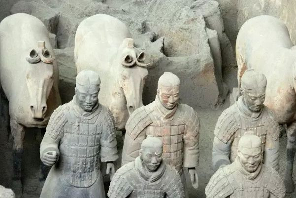 Trong lăng mộ, ngựa là loài động vật có số lượng nhiều nhất.