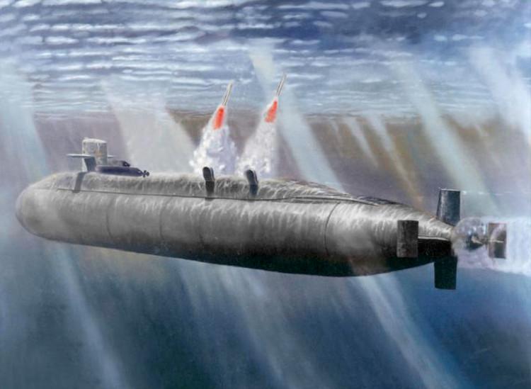 Tên lửa hành trình có một số biến thể và có thể được phóng từ tàu ngầm, tàu khu trục hoặc máy bay.