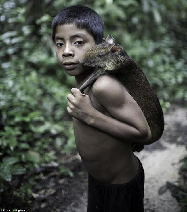 Trẻ em của bộ tộc Awa sống hoang dã ngay từ khi còn bé.