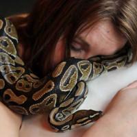 Cô gái ớn lạnh khi biết nguyên nhân trăn cưng co mình khi ngủ chung