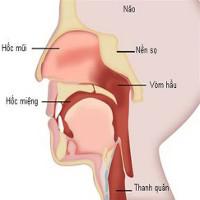 Cách nhận biết sớm các loại ung thư đầu cổ