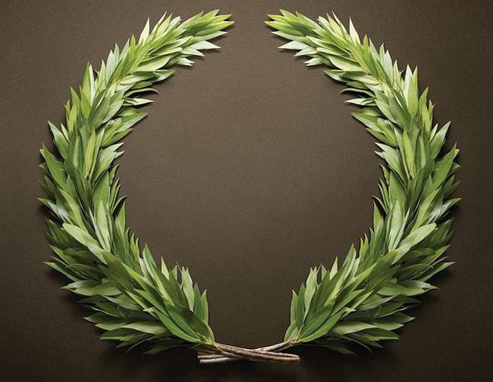 Những chiếc vòng nguyệt quế ở thời cổ đại được miêu tả với hình dáng móng ngựa.