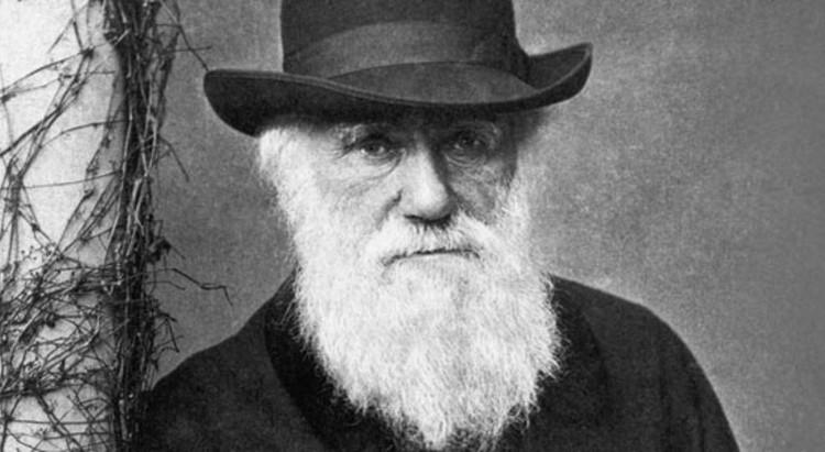 Cây sự sống của Darwin không diễn tả đúng thực tế?
