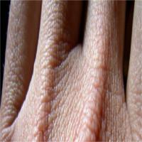 Vì sao chất dịch của cơ thể không bị rò rỉ qua da?