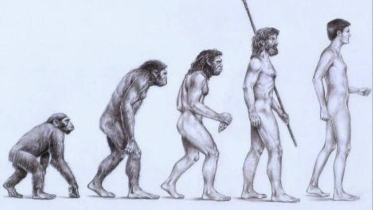 Người có thật sự tiến hóa từ vượn hay không?